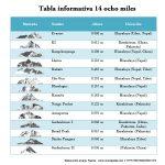 Tabla dónde aparecen las imágenes, la altura, el nombre y la situación de las 14 montañas de ocho mil metros